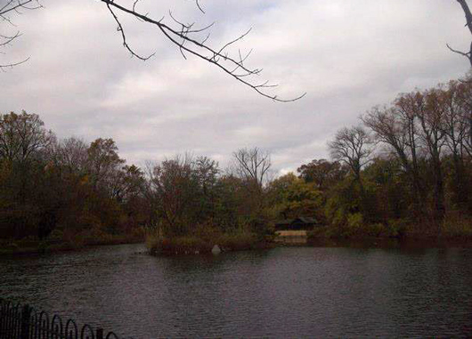 Boat House Island, Druid Hill Park